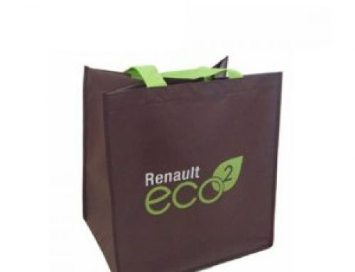 EC-04 Customized-Eco-Friendly tote bag non woven